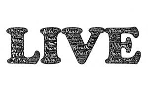 live-461731_1280
